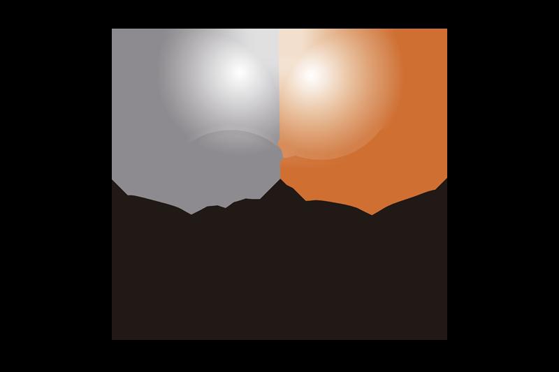 Logotipo de GINSO